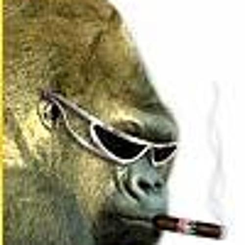 SilvaBakk's avatar