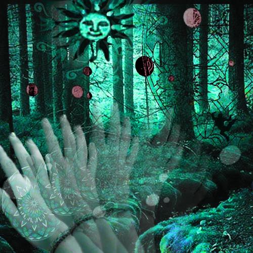 sebastian forest's avatar