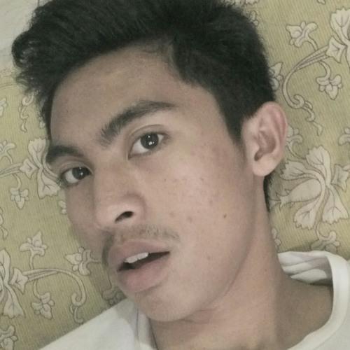 user491925688's avatar