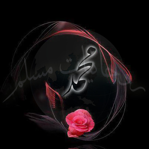 almolamalmoud_1's avatar