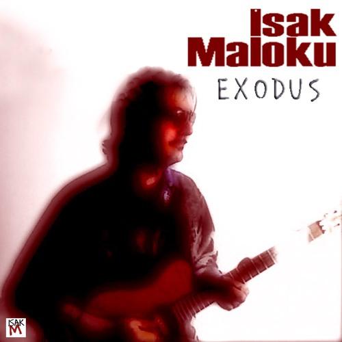 Isak Maloku's avatar