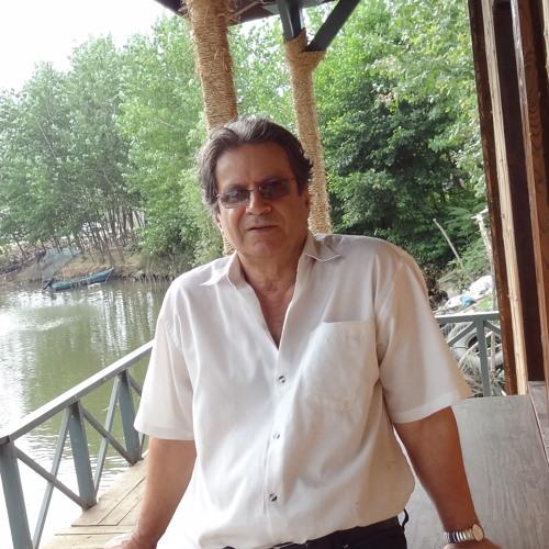 Akbar Mehrpouya's avatar