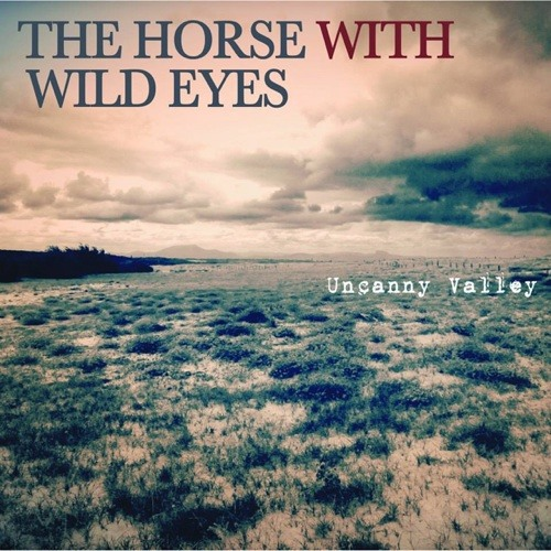 The Horse With Wild Eyes's avatar