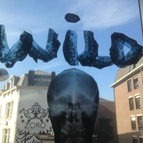 sveke WKS's avatar