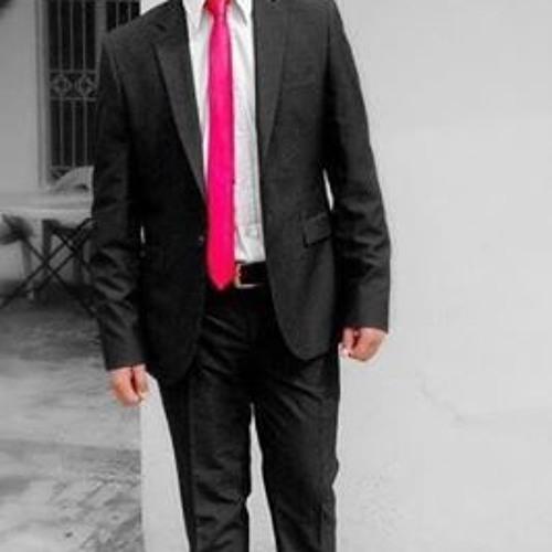 Hamza Ajmal 1's avatar