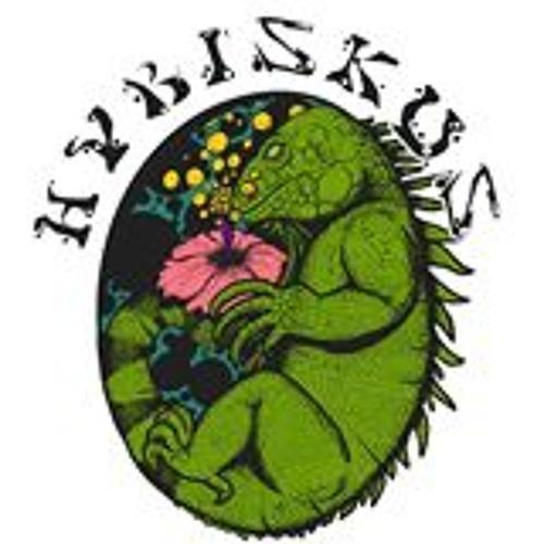 Hybiskus's avatar