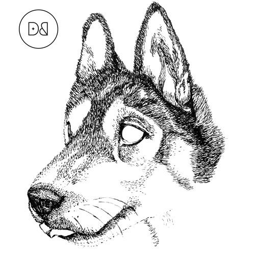Dief & Baker's avatar