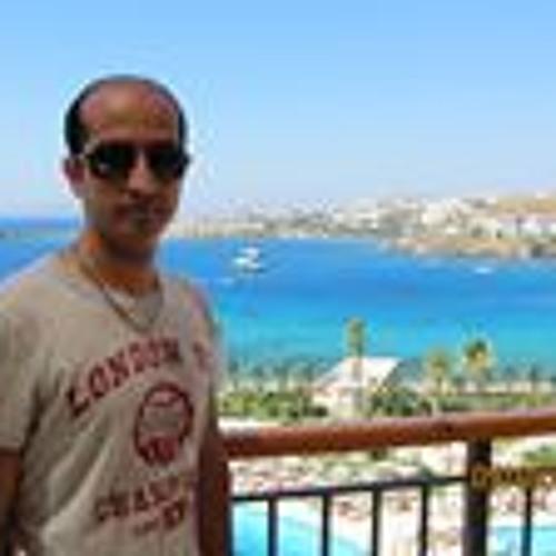 Damoon Ahmadi Dashti's avatar