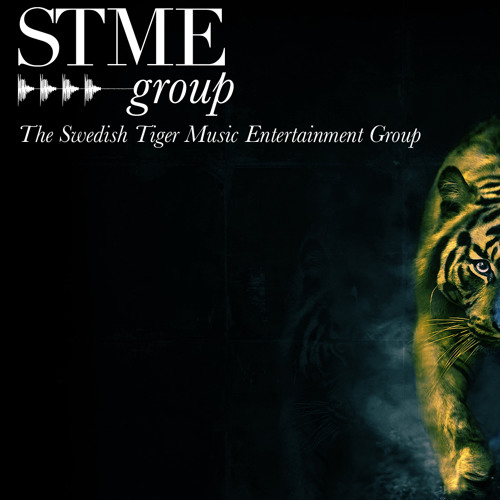 The STME Group Official's avatar