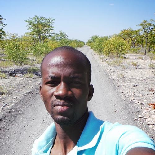 Contreiras Tchingungo's avatar