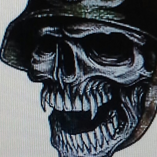 levibeegle145's avatar