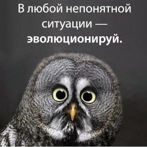 Artem K 3's avatar