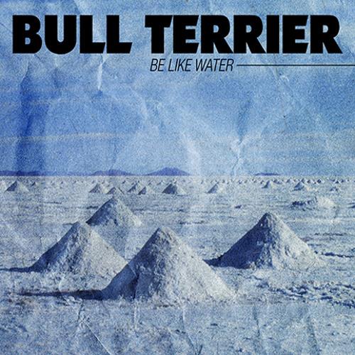 BULL TERRIER (Band)'s avatar