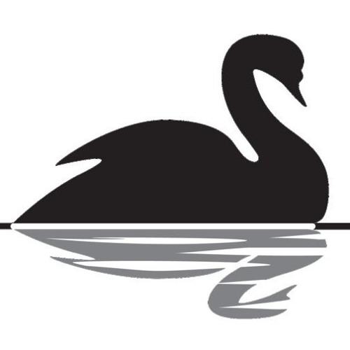 Jenny Blackswan's avatar