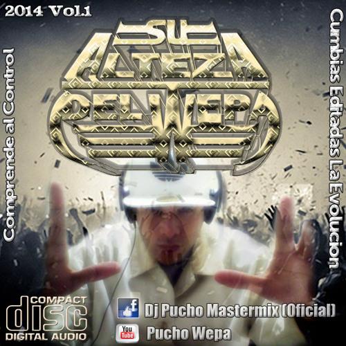 Dj Pucho Mastermix 2014's avatar