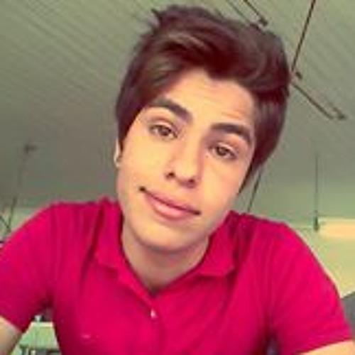 Rafael Rodrigues 376's avatar