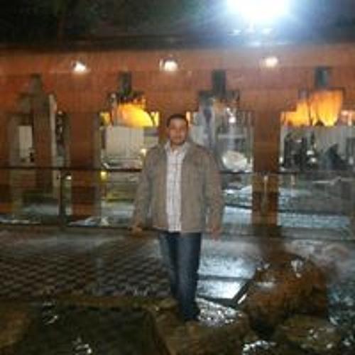 Mohamed Etreby's avatar