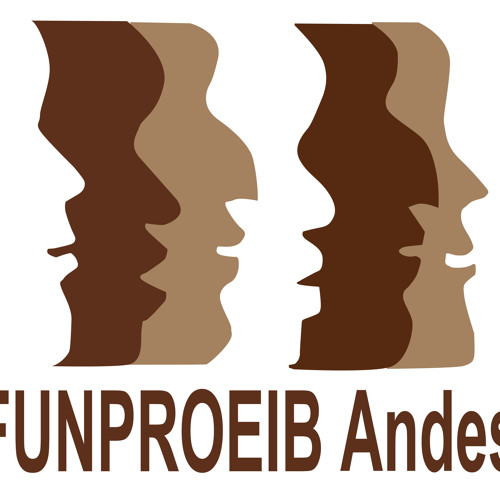 FUNPROEIB Andes's avatar