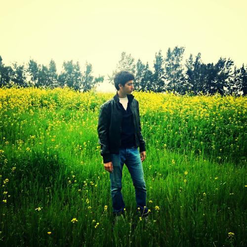 Zaynex's avatar