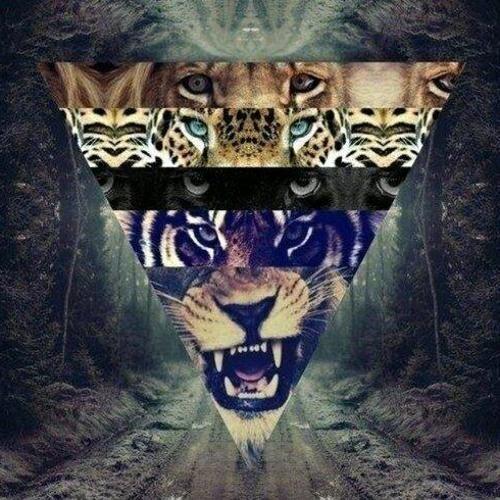 Alejandro Loza 1's avatar