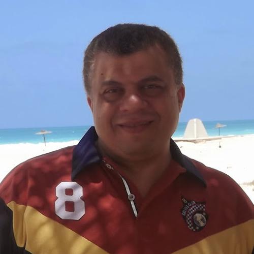 Mohsen Fahmy 1's avatar