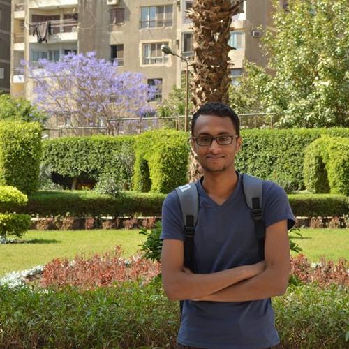 Mo'men Elkashif's avatar