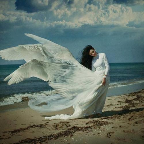 xatia basharuli's avatar