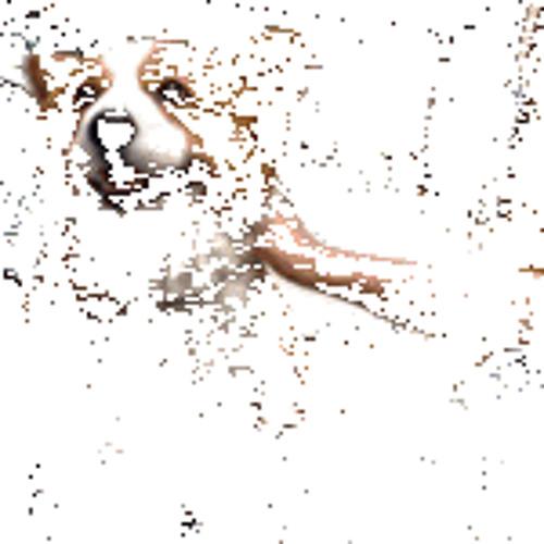 Barelyblurred's avatar
