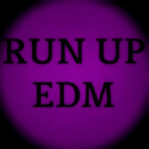 RUN UP EDM's avatar
