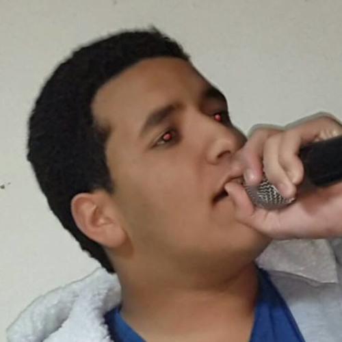 BaraaMohamed's avatar