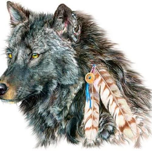 Wolf_boy100's avatar