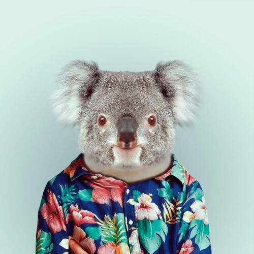 Matt Irvine*'s avatar