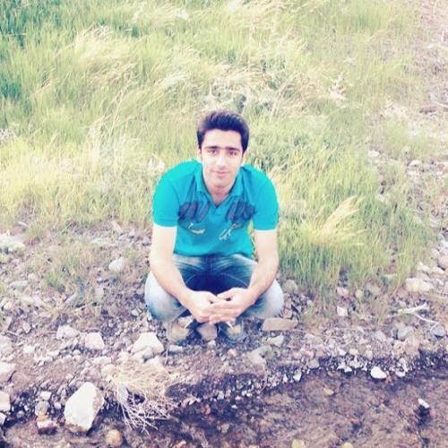 mojtaba akbari 1's avatar