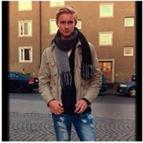 Ludvig Göranzon's avatar