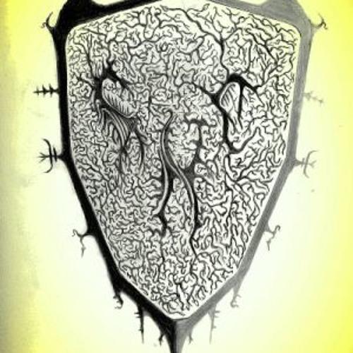 schizophrenichousecat's avatar