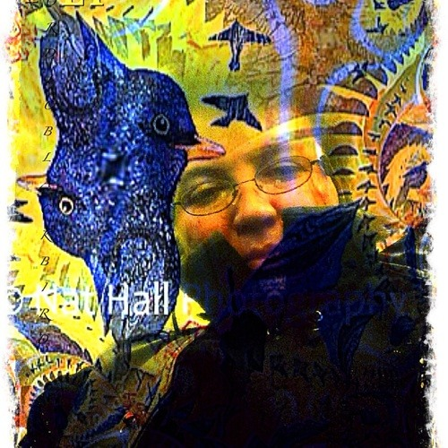 nordicblackbird's avatar