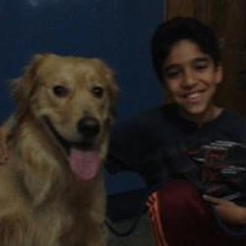 Mahmoud Mohamed 440's avatar
