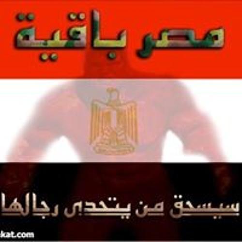 Hossam Elhawary 5's avatar