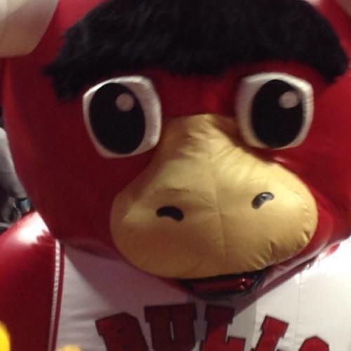 Joel Zitek's avatar