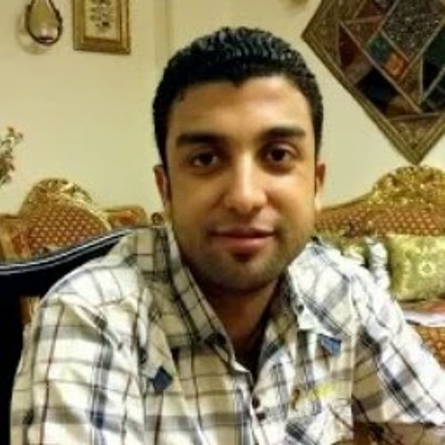 Diaa Eldeen Ismael's avatar
