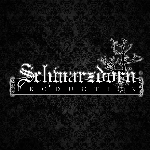Schwarzdorn Production's avatar