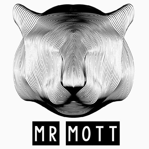 MR MOTT's avatar