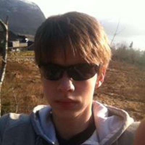 Steffen Olsen Brandal's avatar