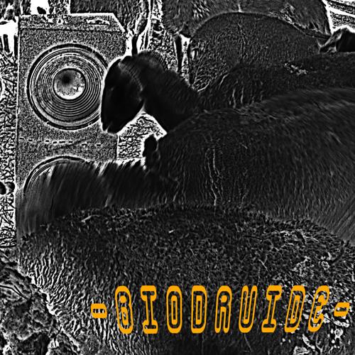 biodruide's avatar