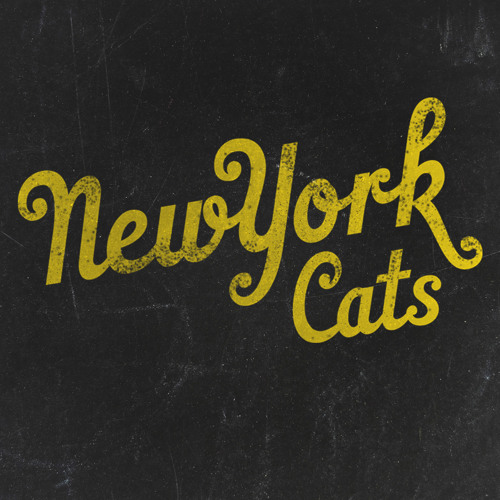 New York Cats's avatar