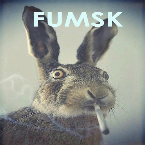 FUMSK's avatar