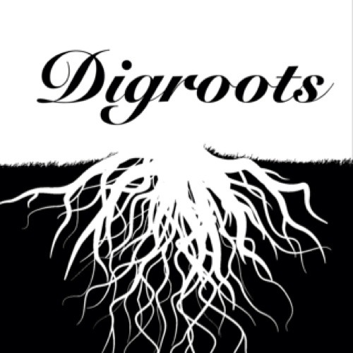 DIGROOTS©'s avatar