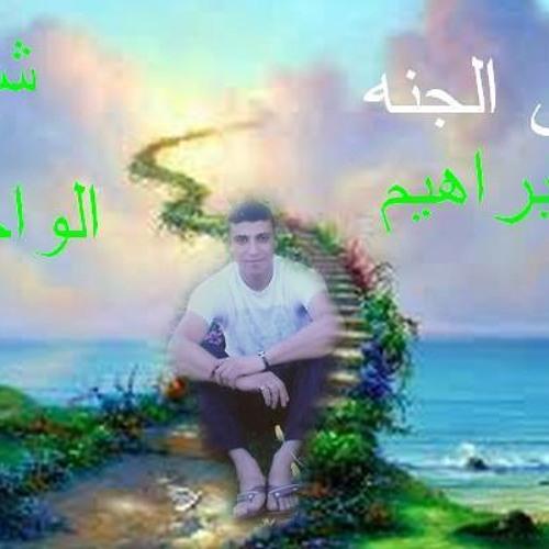 ahmednasrelborlsy's avatar