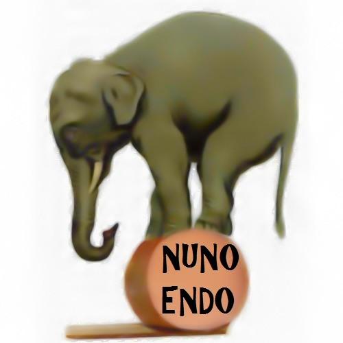 Nuno Endo's avatar