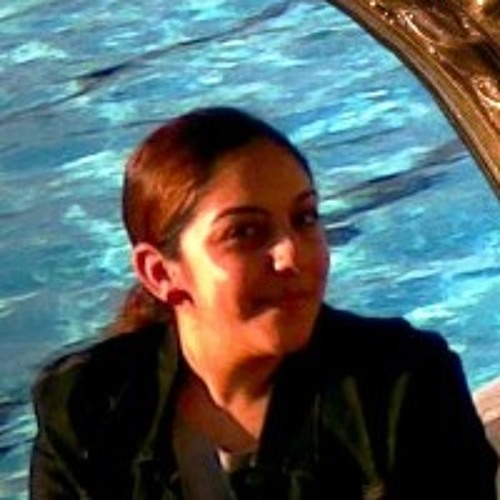 salma-hesham-fathey's avatar